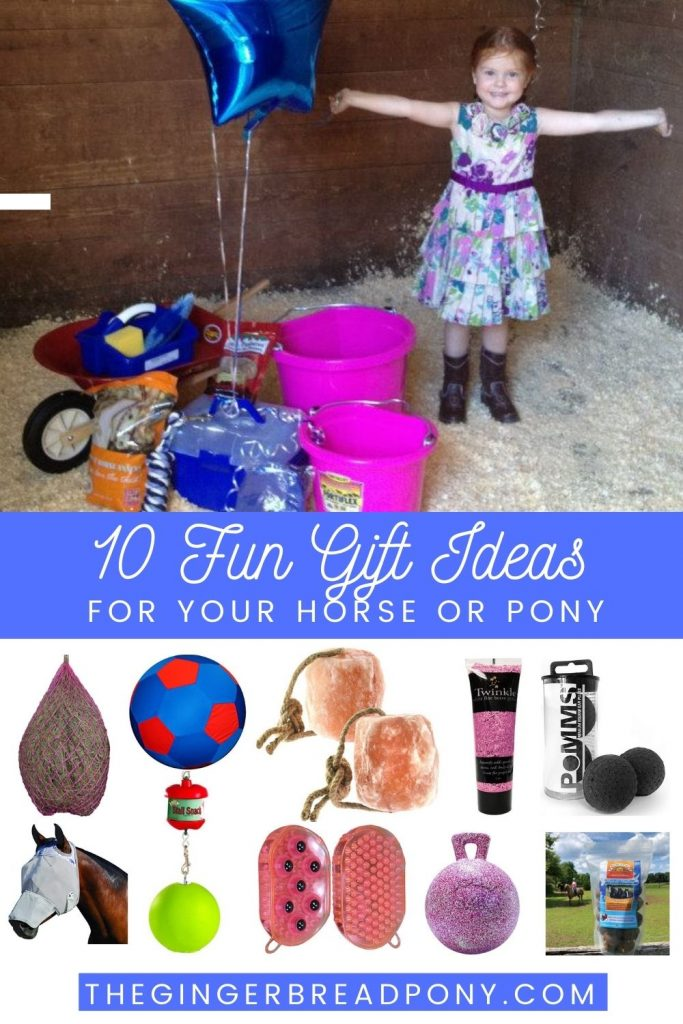 10 Fun Horse Gift Ideas Pin