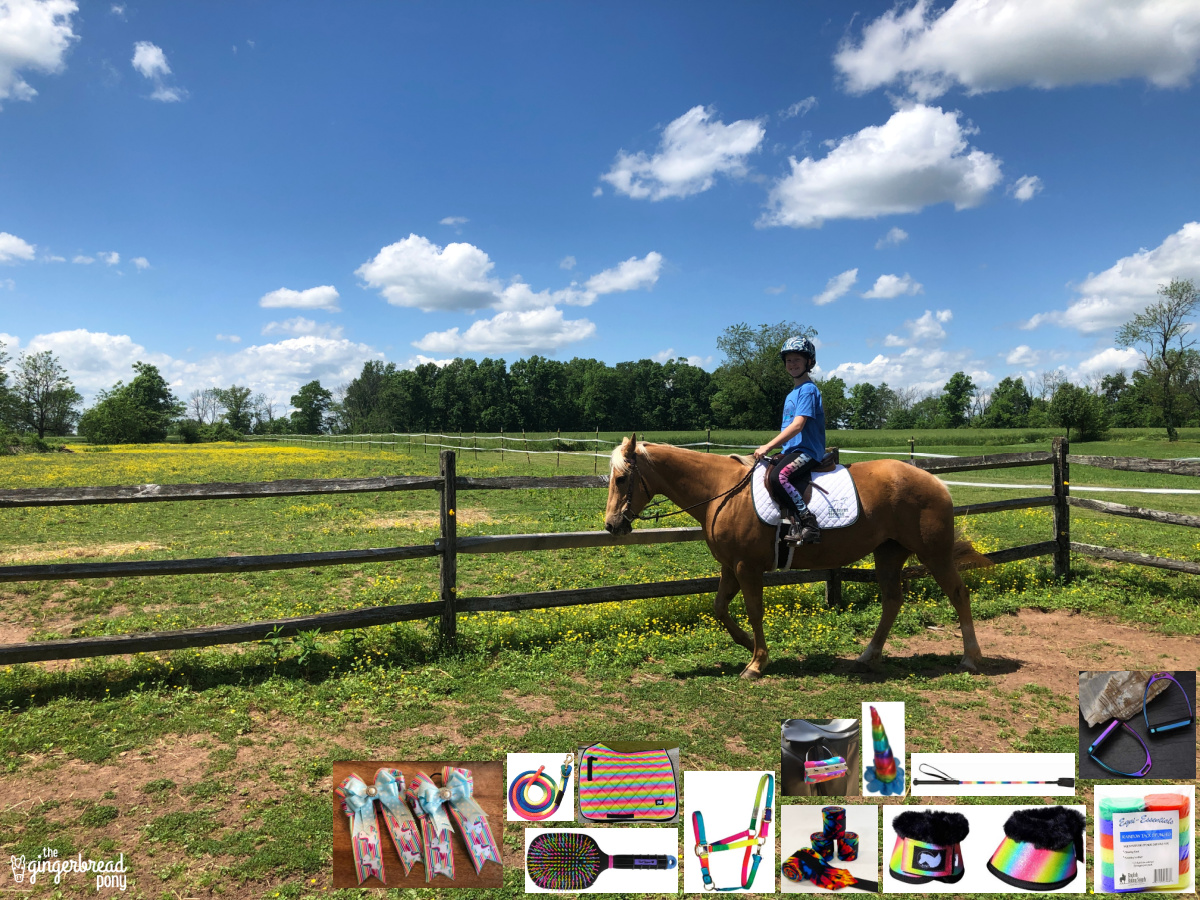 Rainbow Horse Tack and Accessories