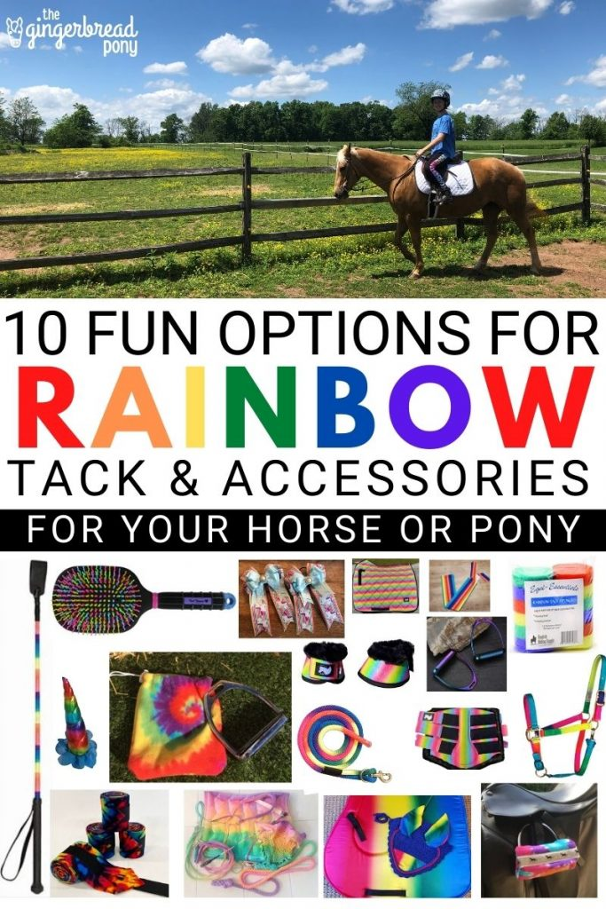 Rainbow Tack and Accessories for Your Horse PIN