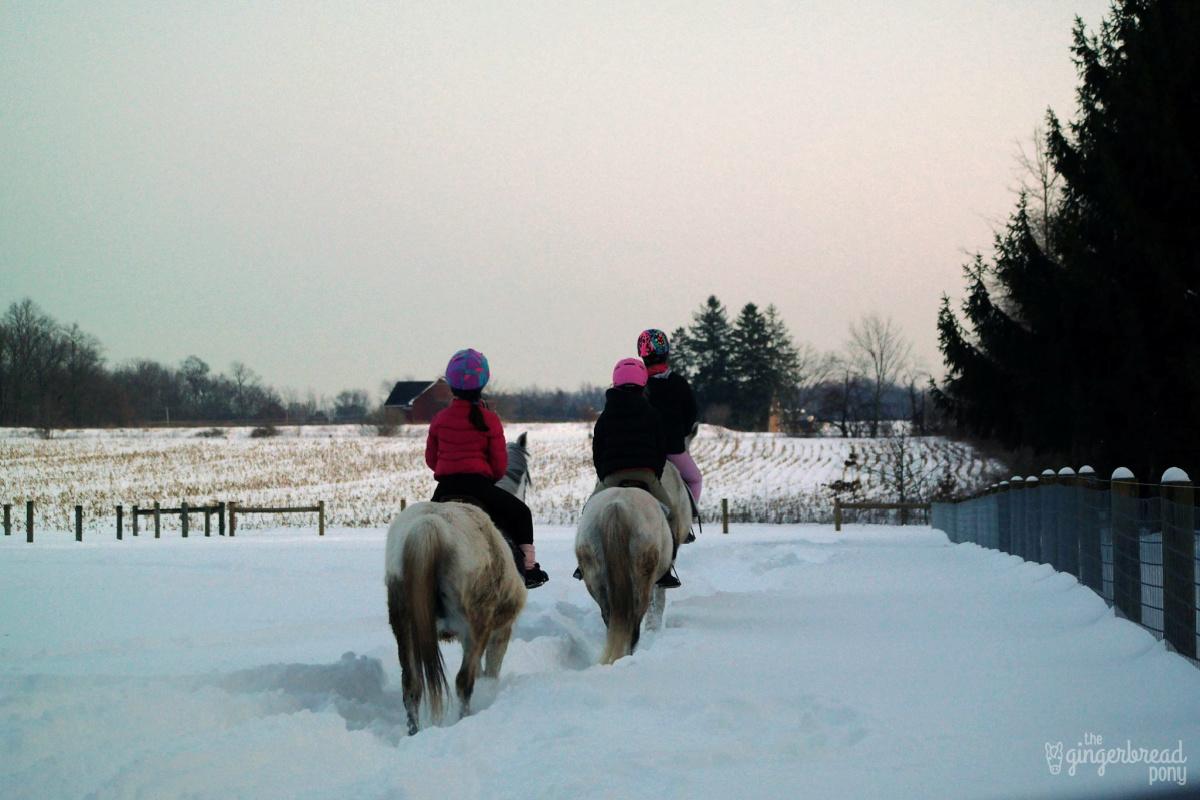Snow ride 1 edit