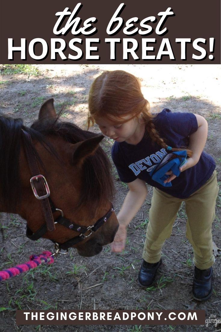 Best Horse Treats PIN