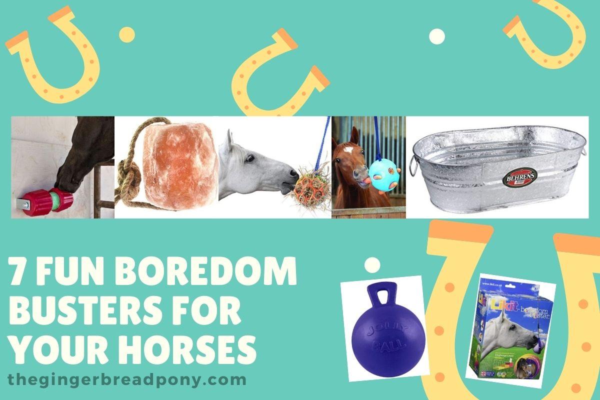 horse boredom busters HERO